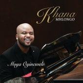 Wena Wedwa Ufanelwe de Khana Mhlongo