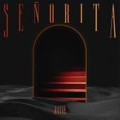 Senorita by Katie