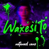 Waxesito de Natanael Cano