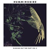Digging Out the Past, Vol. 2 by The Hummingbird