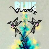Bluebirds de Noah Willage