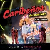 Tu Falta de Querer. Cumbia Peruana de Orquesta Caribeños de Guadalupe