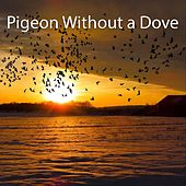 Pigeon Without a Dove by Patrick Dimon