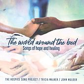 The World Around the Bed by Tricia Walker