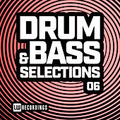 Drum & Bass Selections, Vol. 06 di Various Artists