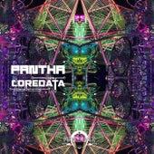 Pantha de Coredata
