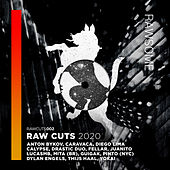 RAW CUTS 2020 de Various Artists