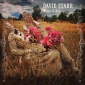 Beauty & Ruin de David Starr