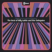 Organ Grooves And Soul Brothers - The Best Of Billy Larkin And The Delegates by Billy Larkin
