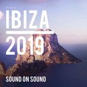 Ibiza 2019 de Various Artists