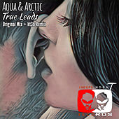 True Leads de Aqua And Arctic