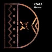 Montuno von Yoga