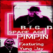 S.A.P. (Space Age Pimpin') [feat. Yung Jay] by Big D
