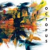 Octopus de Kris Davis