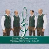 Steirische Sänger- und Musikantentreffen 29 by Various Artists