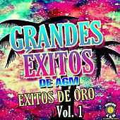 Grandes Exitos De AGM,Exitos De Oro Vol.1 de German Garcia