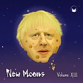 New Moons Vol. XIII by Various Artists