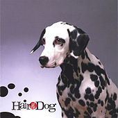 Collection de Hair of the Dog