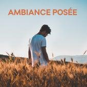Ambiance Posée von Various Artists