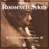Feel Like Blowing My Horn by Roosevelt Sykes