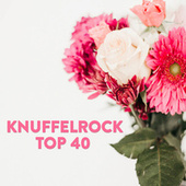 Knuffelrock Top 40 de Various Artists