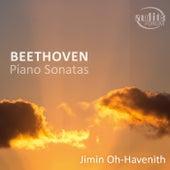 Ludwig van Beethoven: Piano Sonatas Nos. 23, 30 & 32 de Jimin Oh-Havenith