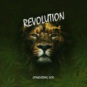 Revolution Time de Conquering Lion
