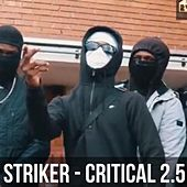 Critical 4.0 by Striker