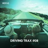 Driving Trax, Vol. 08 de Hot Q