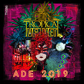 Tropical Velvet ADE 2019 by Various Artists