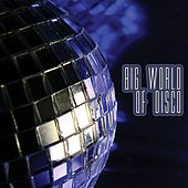 Big World of Disco by Various Artists