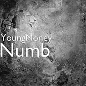 Numb von Young Money