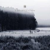 El Resplandor de los Ciervos by Aleja Sanchez