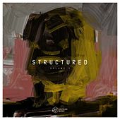 Voltaire Music Pres. Structured, Vol. 2 von Various Artists