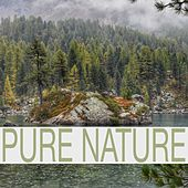 Pure Nature by Rain Sounds (2)
