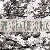 Spring Nature Sounds by Nature Sounds (1)