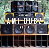 Ami Dubz, Vol. 1 de Various Artists