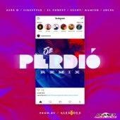 Se Perdio (Remix) de Area 3