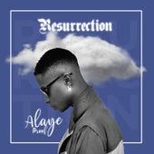 Resurrection von Alaye Proof