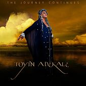 The Journey Continues de Toyin Adekale
