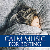 Calm Music For Resting by Various Artists