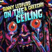 On the Ceiling by Sunny Ledfurd