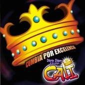 Cumbia por Excelencia by Grupo Cali
