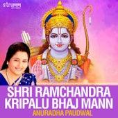 Shri Ramchandra Kripalu Bhaj Mann - Single de Anuradha Paudwal