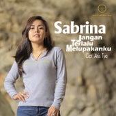 Jangan Terlalu Melupakan Ku by Sabrina
