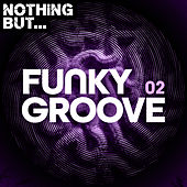 Nothing But... Funky Groove, Vol. 02 de Various Artists