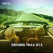 Driving Trax, Vol. 12 de Hot Q