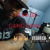 Gang Gang by David Lee