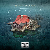 PTSD by Rod Wave