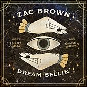Dream Sellin' (feat. Poo Bear and Sasha Sirota) di Zac Brown